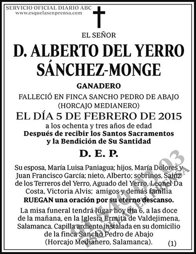 Alberto del Yerro Sánchez-Monge